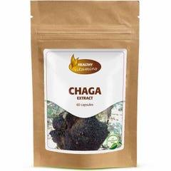 Chaga extract