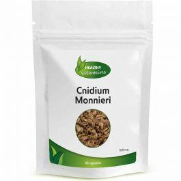 Cnidium monnieri (Brenndolde)