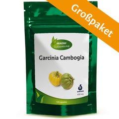 Garcinia Cambogia Großpaket