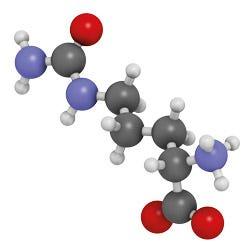 L-Citrullin